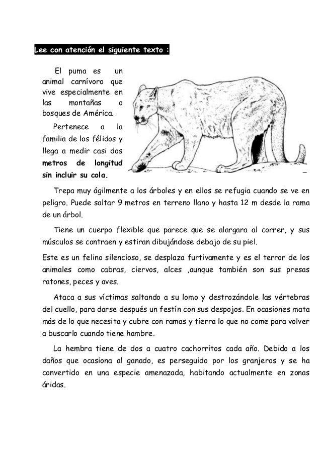 misericordia Humano Extremistas  Texto Informativo Corto De Animales Para Niños - Hay Niños