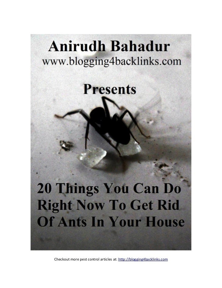 Checkout more pest control articles at: http://blogging4backlinks.com