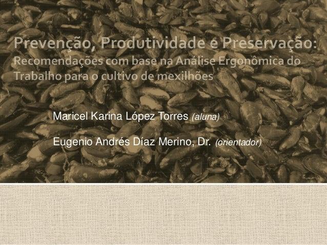 Maricel Karina López Torres (aluna)Eugenio Andrés Díaz Merino, Dr. (orientador)