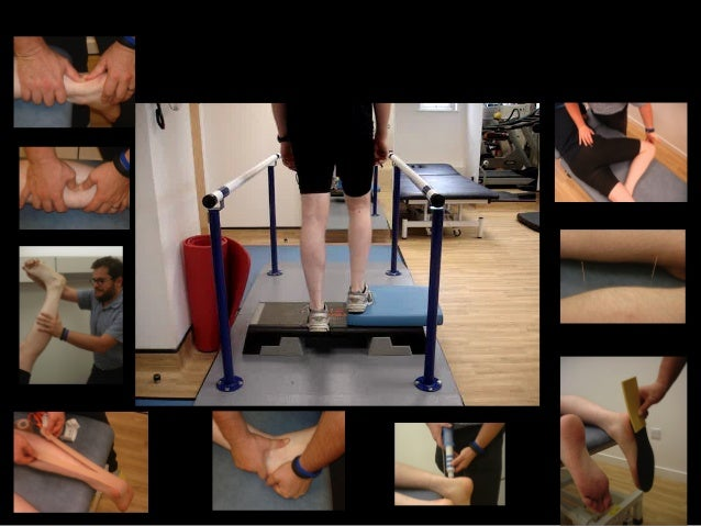 dr dylan morrisey tendon loading pdf