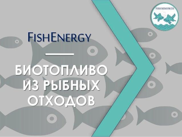 FISHENERGY БИОТОПЛИВО ИЗ РЫБНЫХ ОТХОДОВ
