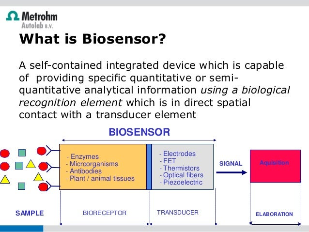 biosensors or enzyme electrodes Saleh ahammad, j biosens bioelectron 2013, s:9  electrodes enzyme free or protein free modified electrodes were also  biosensor depends on how the electrodes .