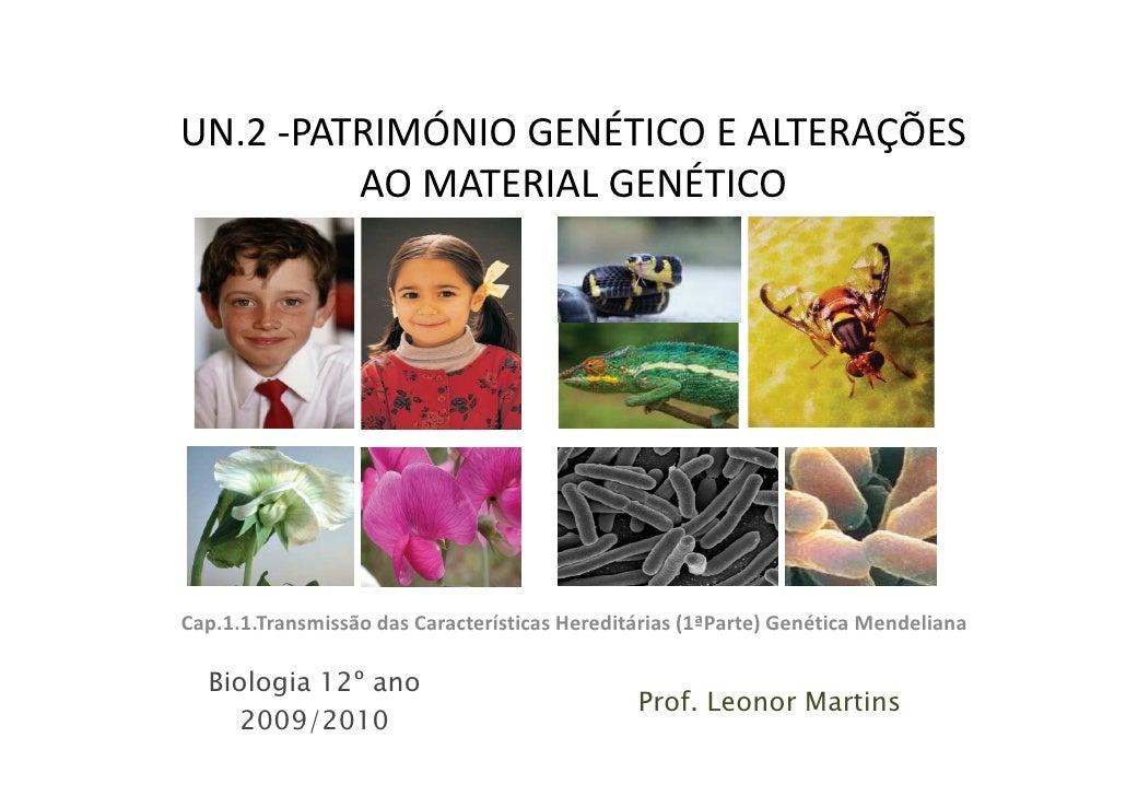 UN.2 -PATRIMÓNIO GENÉTICO E ALTERAÇÕES          AO MATERIAL GENÉTICO     Cap.1.1.Transmissão das Características Hereditár...