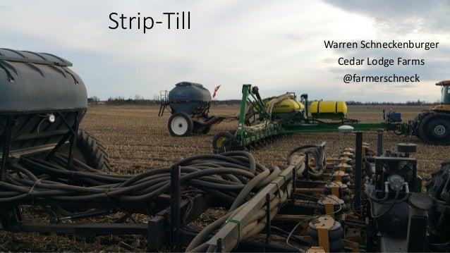 Strip-Till Warren Schneckenburger Cedar Lodge Farms @farmerschneck