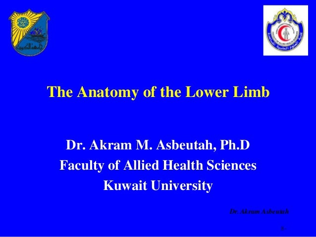 The Anatomy of the Lower Limb  Dr. Akram M. Asbeutah, Ph.D Faculty of Allied Health Sciences        Kuwait University     ...