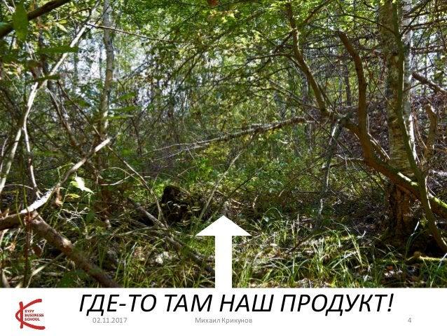ГДЕ-ТО ТАМ НАШ ПРОДУКТ!02.11.2017 Михаил Крикунов 4