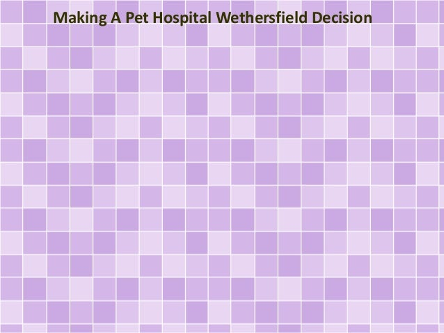 Making A Pet Hospital Wethersfield Decision