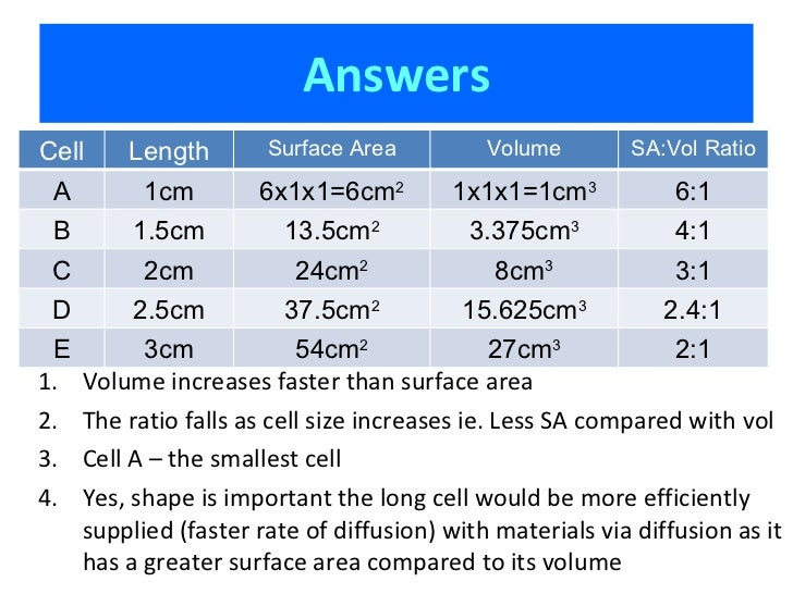 surface area to volume ratio affect on diffusion 4understand the factors that can affect the rate of diffusion  diffusion and osmosis  cells with a larger surface area to volume ratio have a faster rate of.