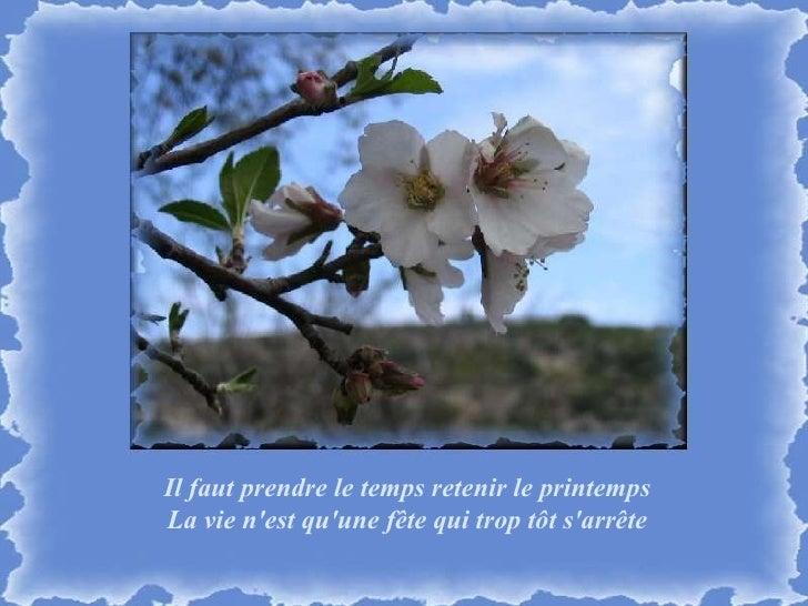 Il faut prendre le temps retenir le printemps La vie n'est qu'une fête qui trop tôt s'arrête