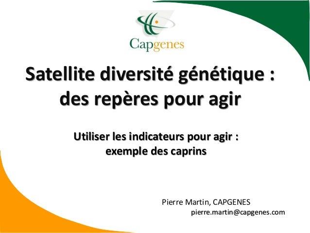 Satellite diversité génétique : des repères pour agir Utiliser les indicateurs pour agir : exemple des caprins Pierre Mart...