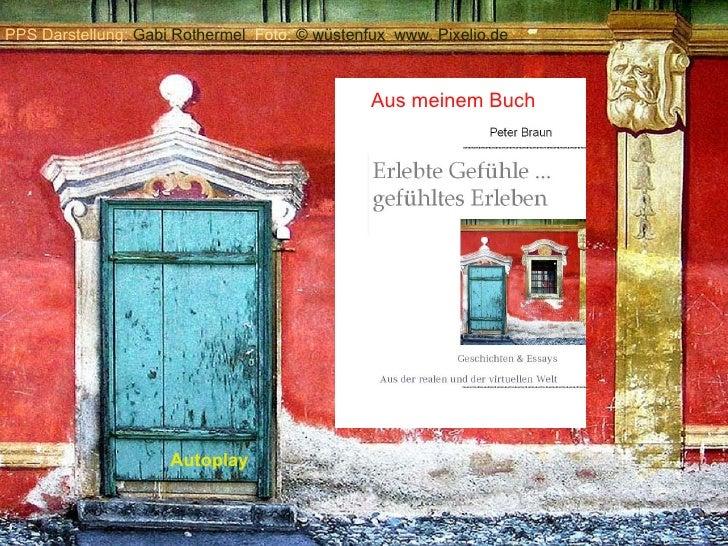 Aus meinem Buch Autoplay PPS Darstellung:  Gabi Rothermel  Foto:  ©  wüstenfux  www. Pixelio.de