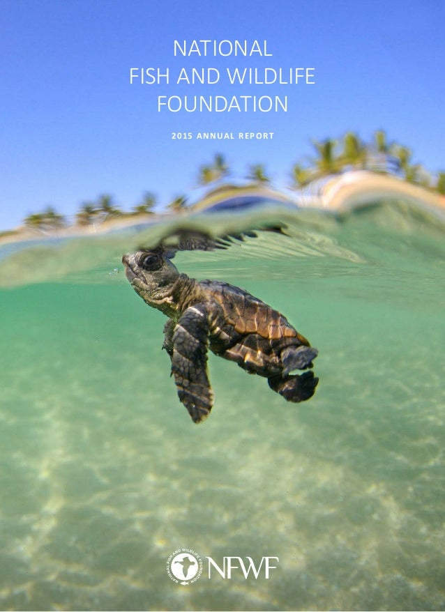 2015 annual report2 for National fish and wildlife foundation