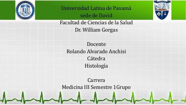 Universidad Latina de Panamá sede de David Facultad de Ciencias de la Salud Dr. William Gorgas Docente Rolando Alvarado An...