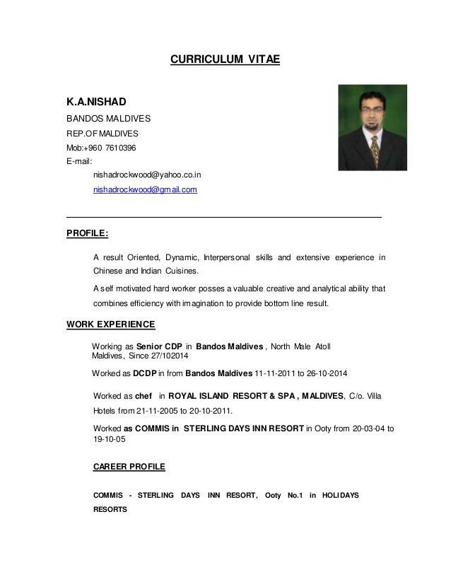 Curriculum Vitae Document Grude Interpretomics Co