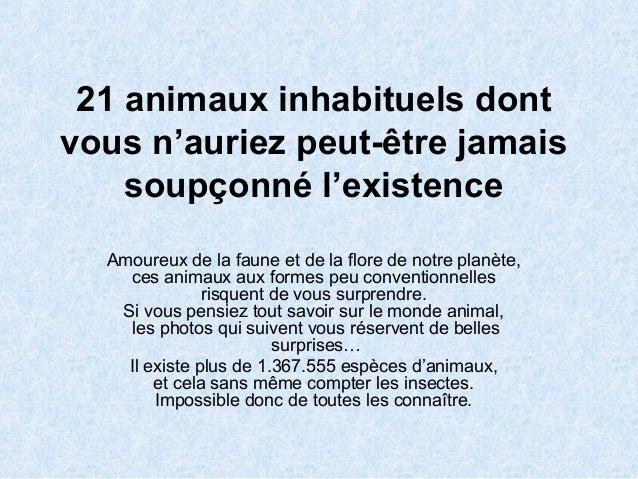 21 animaux inhabituels dont vous n'auriez peut-être jamais soupçonné l'existence Amoureux de la faune et de la flore de no...