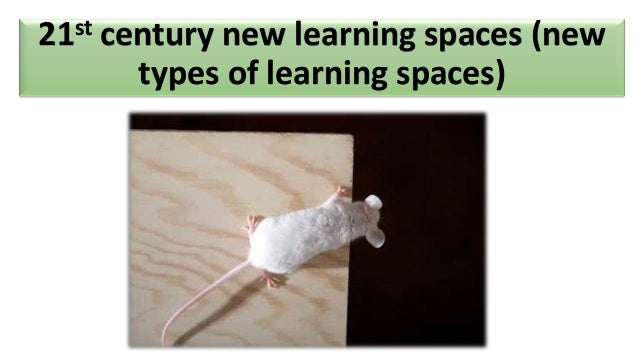 21st   century new learning spaces (new         types of learning spaces)