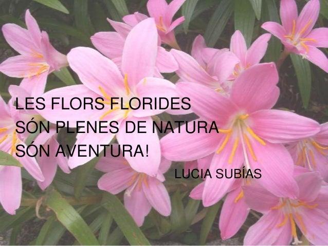LES FLORS FLORIDES SÓN PLENES DE NATURA SÓN AVENTURA! LUCIA SUBÍAS