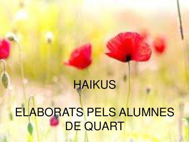 HAIKUS ELABORATS PELS ALUMNES DE QUART