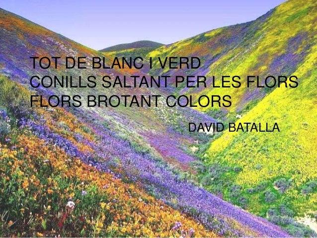 TOT DE BLANC I VERD CONILLS SALTANT PER LES FLORS FLORS BROTANT COLORS DAVID BATALLA