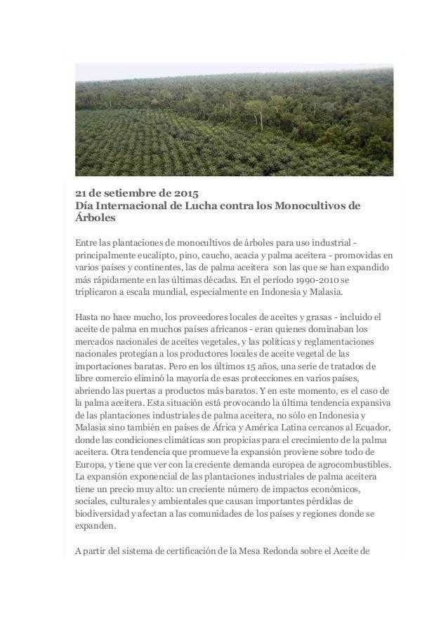 21 de setiembre de 2015 Día Internacional de Lucha contra los Monocultivos de Árboles Entre las plantaciones de monocultiv...