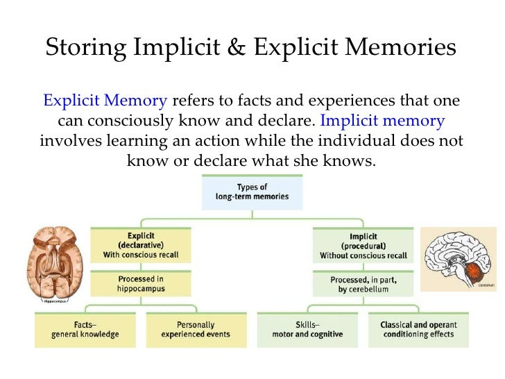 Introductory Psychology Forgetting