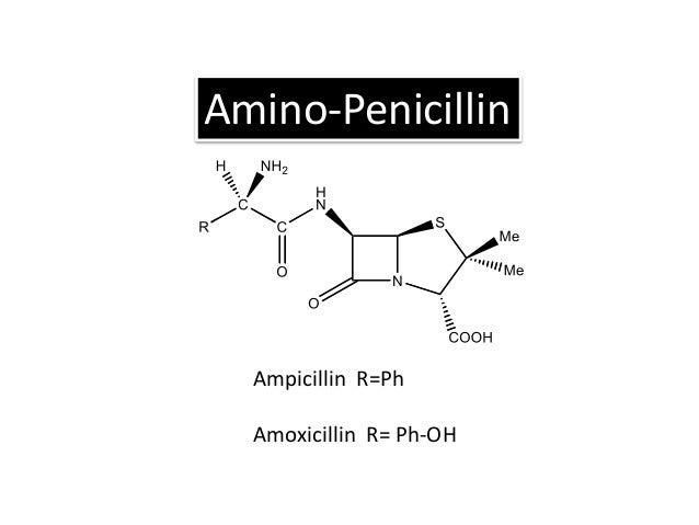 Ampicillin EFFECTIVE AGAINST: • Gram positive + Gram negative bacteria TREATMENT FOR: • Ear infection • Sinusitis • Urinar...