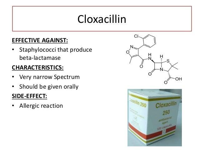 Dicloxacillin EFFECTIVE AGAINST: • Gram positive bacteria + Staphylococci that produce beta- lactamase CHARACTERISTICS: • ...
