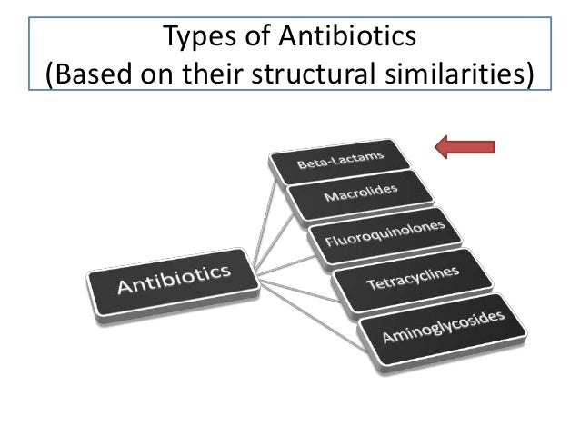 Types of Antibiotics (Based on their structural similarities)