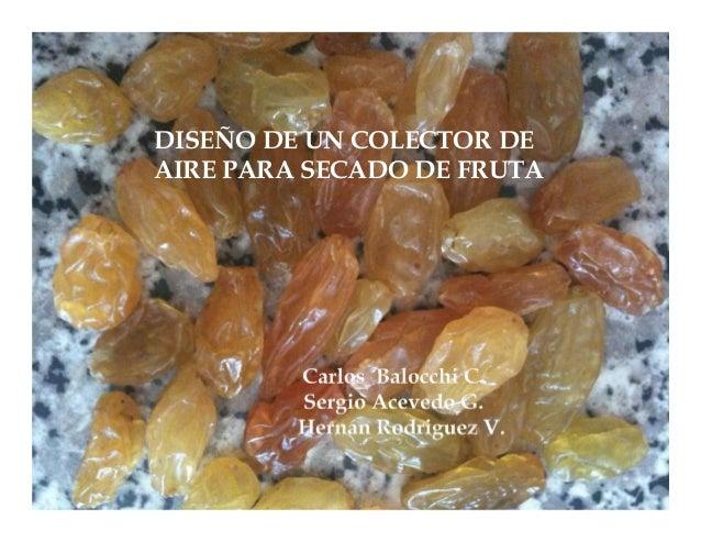 DISEÑO DE UN COLECTOR DEAIRE PARA SECADO DE FRUTA