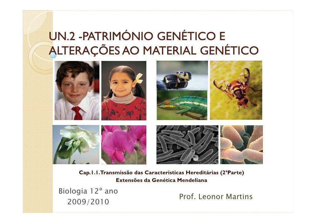UN.2 -PATRIMÓNIO GENÉTICO E ALTERAÇÕES AO MATERIAL GENÉTICO           Cap.1.1.Transmissão das Características Hereditárias...