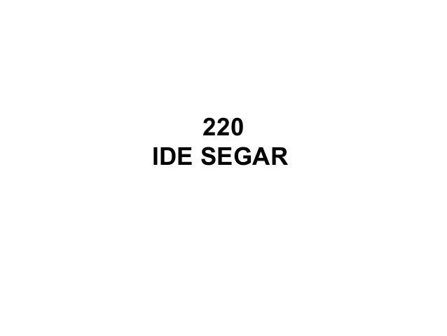 220 IDE SEGAR