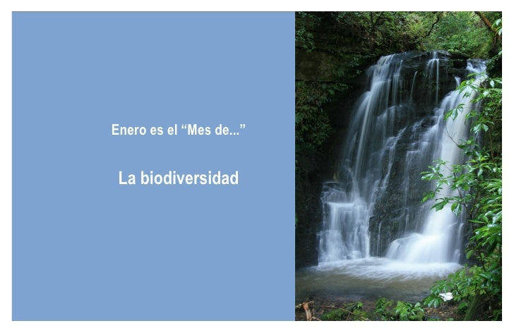 """Enero es el """"Mes de..."""" La biodiversidad"""
