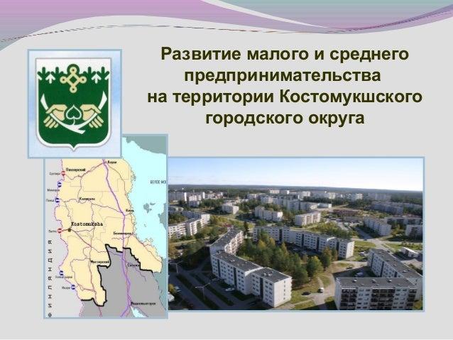 Развитие малого и среднего предпринимательства на территории Костомукшского городского округа