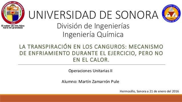 UNIVERSIDAD DE SONORA División de Ingenierías Ingeniería Química LA TRANSPIRACIÓN EN LOS CANGUROS: MECANISMO DE ENFRIAMIEN...