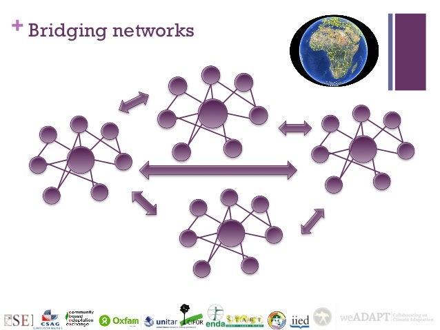 + Bridging networks