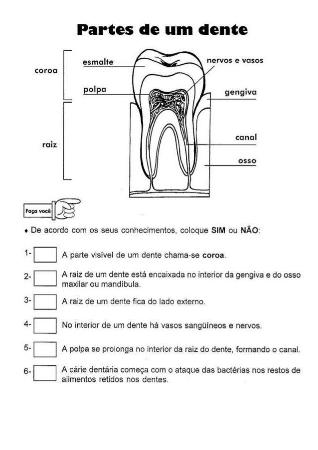 Well-known 220 atividades de_ciências_-_4ª_série[1] XJ02