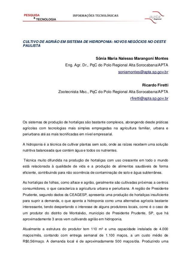 CULTIVO DE AGRIÃO EM SISTEMA DE HIDROPONIA: NOVOS NEGÓCIOS NO OESTE PAULISTA Sônia Maria Nalesso Marangoni Montes Eng. Agr...