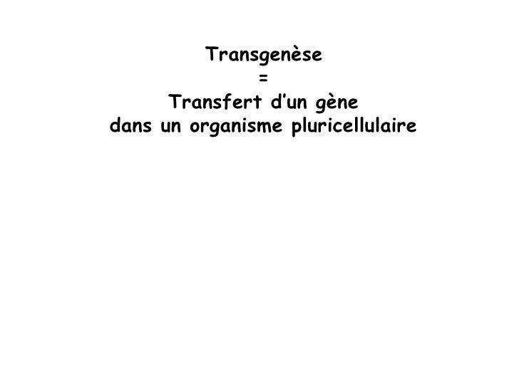 Obtention de cellules ES recombinées (par ciblage génétique, recombinaison homologue)