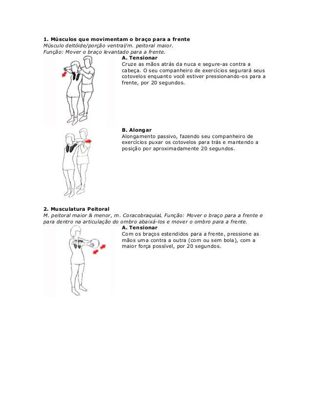 Estes exercícios acionam todos os músculos da região