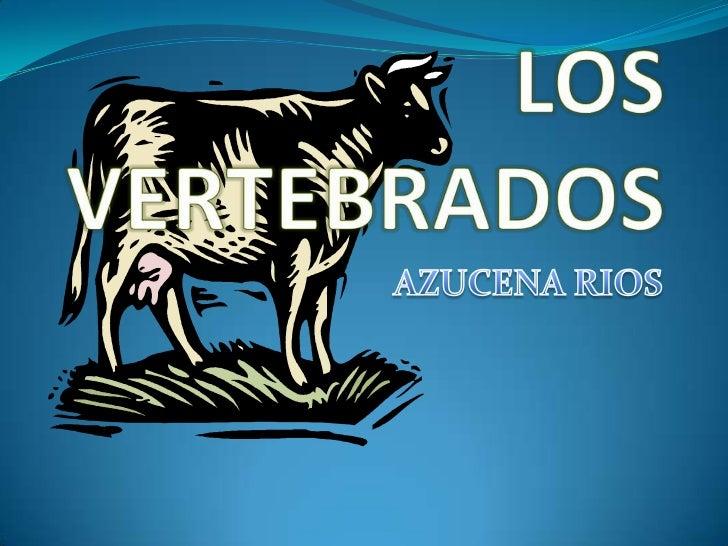 LOS VERTEBRADOS<br />AZUCENA RIOS<br />