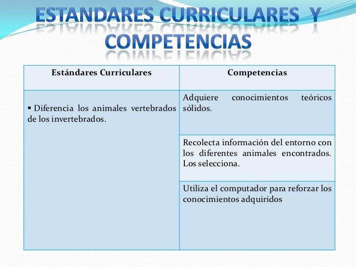 ESTANDARES CURRICULARES  Y COMPETENCIAS<br />