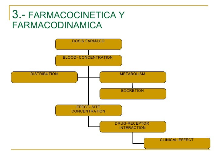 3.-  FARMACOCINETICA Y FARMACODINAMICA DOSIS FARMACO BLOOD- CONCENTRATION  EFECT- SITE CONCENTRATION DRUG-RECEPTOR  INTERA...