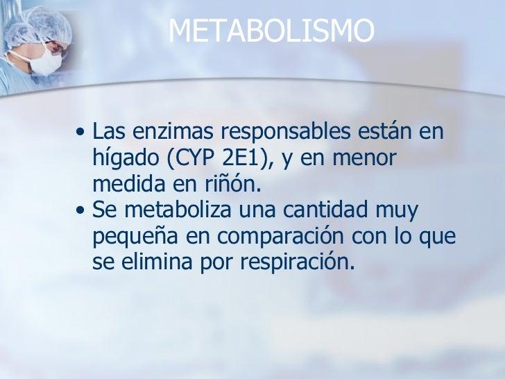 METABOLISMO <ul><ul><li>Las enzimas responsables están en hígado (CYP 2E1), y en menor medida en riñón. </li></ul></ul><ul...