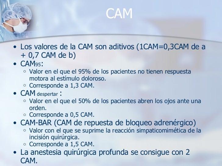 CAM <ul><ul><li>Los valores de la CAM son aditivos (1CAM=0,3CAM de a + 0,7 CAM de b) </li></ul></ul><ul><ul><li>CAM 95 :  ...