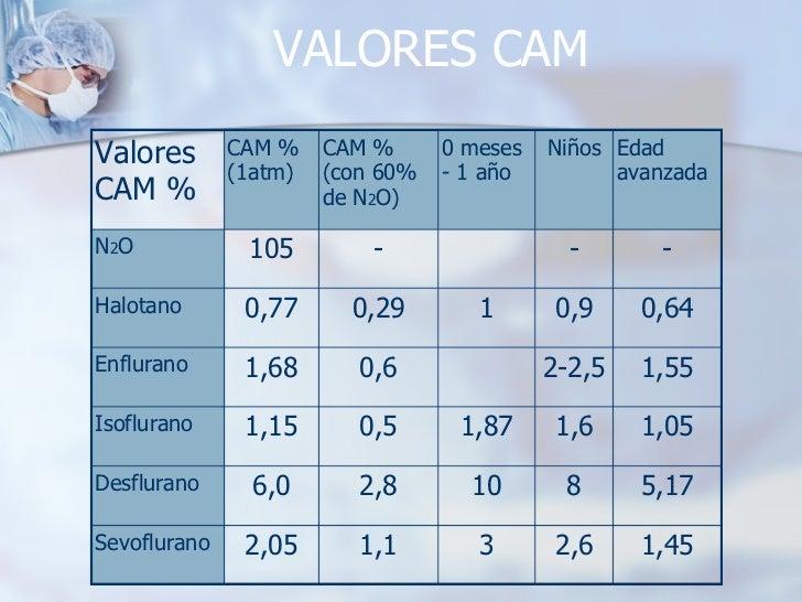 VALORES CAM 3 10 1,87 1 0 meses - 1 año 1,1 2,8 0,5 0,6 0,29 - CAM %  (con 60%  de N 2 O) 2,05 6,0 1,15 1,68 0,77 105 CAM ...
