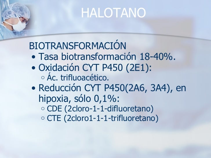 HALOTANO <ul><li>BIOTRANSFORMACIÓN </li></ul><ul><ul><li>Tasa biotransformación 18-40%. </li></ul></ul><ul><ul><li>Oxidaci...