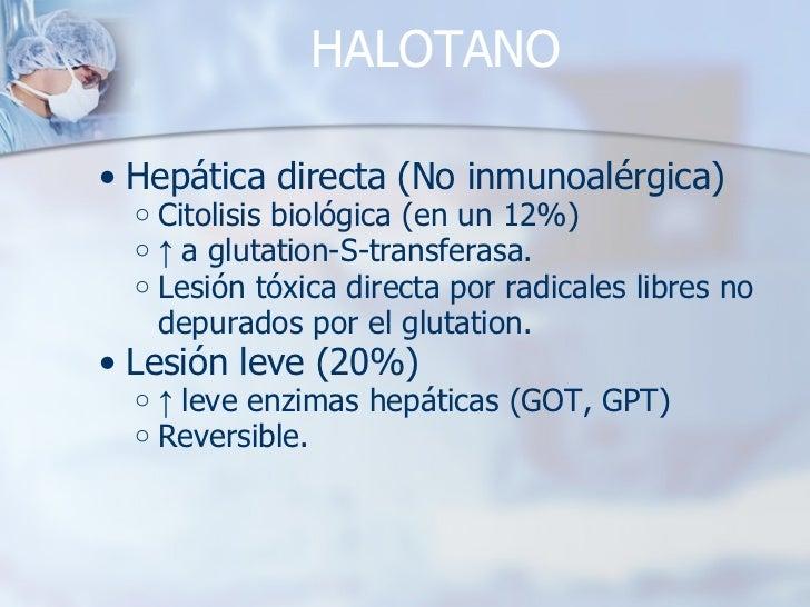 HALOTANO <ul><ul><li>Hepática directa (No inmunoalérgica) </li></ul></ul><ul><ul><ul><li>Citolisis biológica (en un 12%) <...