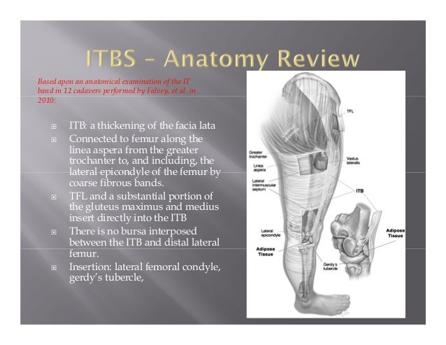 Iliotibial Band Syndrome Inservice
