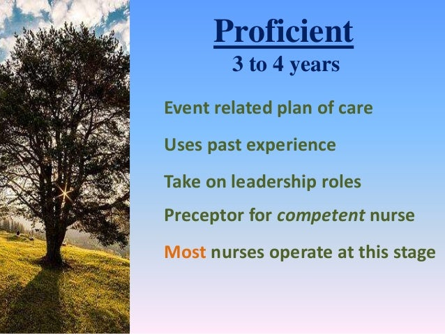 attributes of a competent nurse Provide you with direction and assist you in your professional development as a nurse working at the rch  abilities and attributes to be deemed competent in the.