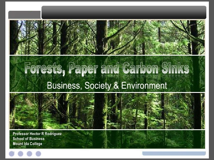 Forests, Paper and Carbon Sinks Business, Society & Environment Professor Hector R Rodriguez School of Business Mount Ida ...